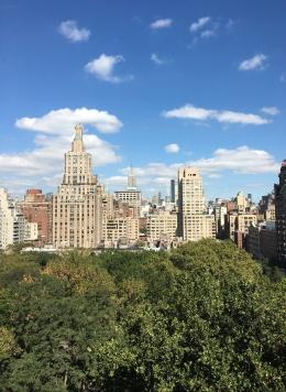 Vista biblioteca NYU Oct 3 17