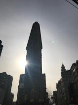 Sol en NYC January 2 19